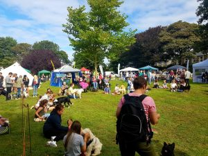 Fun at Victoria Park dog show