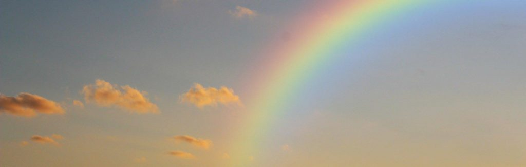 This image has an empty alt attribute; its file name is rainbow-1024x325.jpg